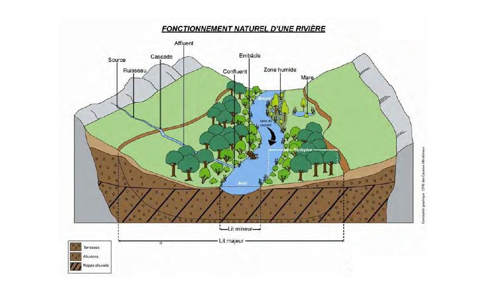 fonctionnement d 39 un cours d 39 eau bassin versant du gapeau. Black Bedroom Furniture Sets. Home Design Ideas